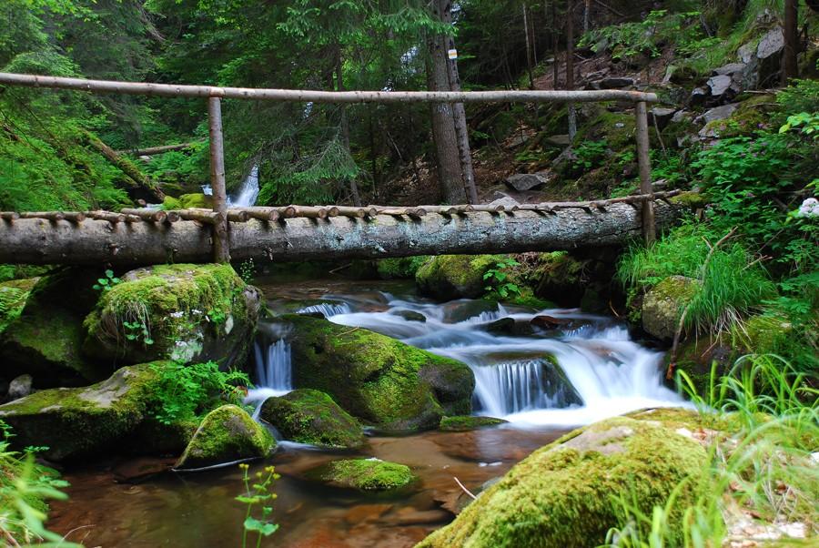 Уикенд в Родопа планина – красива, живописна, магнетична!